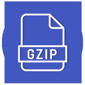 Verificare Gzip